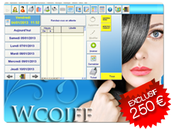 Wsalon logiciel gestion salon de coiffure compatible for Logiciel pour salon de coiffure